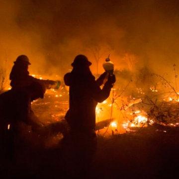 Las cartas sobre la mesa: incendios forestales.