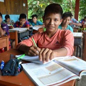 El sínodo panamazónico y el desafío de la educación en la Amazonía