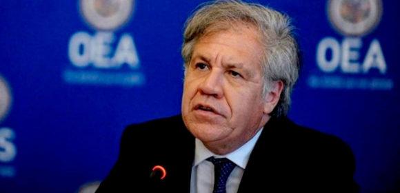 Auditoría de la OEA detecta manipulación informática y recomienda nueva elección con nuevas autoridades