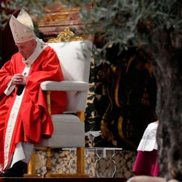 """Domingo de Ramos. El Papa: """"redescubramos que la vida no sirve, si no se sirve"""""""